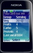 Free Mobile Personal Trainer - Food Java Mobile Phone Application