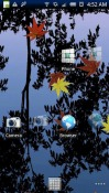 Transparent Launcher Android Mobile Phone Application