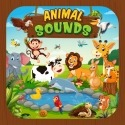 Animal Sound For Kids Learning BLU M8L Plus Application