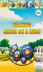 Talking Birds On A Wire Android Mobile Phone Game