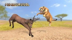Puma Survival: Simulator