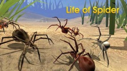 Life Of Spider Android Mobile Phone Game