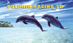 Dolphin Racing 3D Android Mobile Phone Game