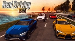 Real Driving Sim Android Mobile Phone Game