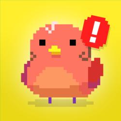 Find Bird - Match Puzzle