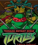Ninja Turtules Game for QMobile E770