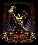 TNA Wrestling Game for Java Mobile Phone
