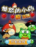 Angry Birds Crazy Java Mobile Phone Game