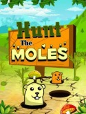 Hunt The Moles Game for Java Mobile Phone