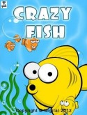 Crazy Fish Game for LG T375 Cookie Smart
