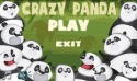 Crazy Panda Android Mobile Phone Game