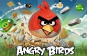 Angry Birds iOS Mobile Phone Game