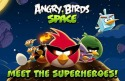 Angry Birds Space iOS Mobile Phone Game