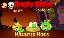 Angry Birds Seasons Haunted Hogs! Android Mobile Phone Game