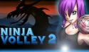 Ninja Volley 2 Android Mobile Phone Game
