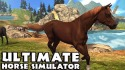 Ultimate Horse Simulator Android Mobile Phone Game