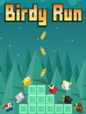 Birdy Run Nokia C3-01 Gold Edition Game
