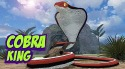 King Cobra Snake Simulator 3D Android Mobile Phone Game