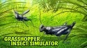 Grasshopper Insect Simulator Android Mobile Phone Game