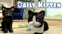 Daily Kitten: Virtual Cat Pet Android Mobile Phone Game