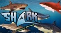 Shark Simulator 2018 Android Mobile Phone Game