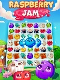 Raspberry Jam Android Mobile Phone Game