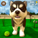 Virtual Puppy Simulator Android Mobile Phone Game