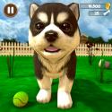 Virtual Puppy Simulator Xiaomi Poco X3 NFC Game