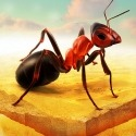 Little Ant Colony - Idle Game Rivo Phantom PZ4 Game