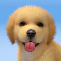 Adopt Puppies Android Mobile Phone Game