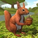 Squirrel Simulator 2 : Online Android Mobile Phone Game