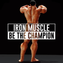 Iron Muscle - Be The Champion Bodybulding Workout Micromax Bolt Q339 Game