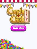 Candy Crush: Saga Java Mobile Phone Game