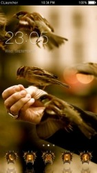 Birds CLauncher Android Mobile Phone Theme