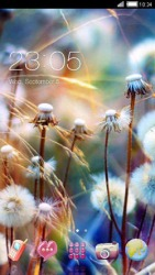 Dendoline CLauncher Android Mobile Phone Theme