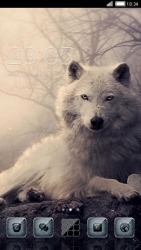 White Wolf CLauncher Android Mobile Phone Theme