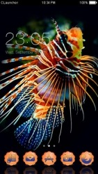 Pterois CLauncher Android Mobile Phone Theme