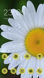 White Flower CLauncher