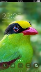 Green Magpie CLauncher Android Mobile Phone Theme