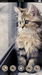 Kitten CLauncher Android Mobile Phone Theme