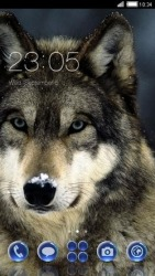 Wolf CLauncher Android Mobile Phone Theme