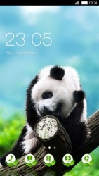 Panda CLauncher