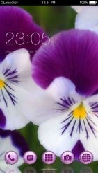 Purple Flowers CLauncher Android Mobile Phone Theme