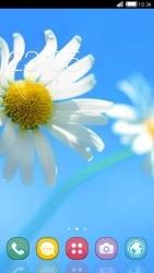 Flowers CLauncher