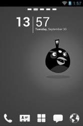 Angry Birds Black Go Launcher