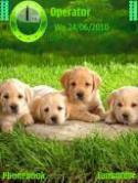 Cute Puppies Symbian Mobile Phone Theme
