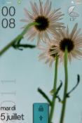 Flower-LS iOS Mobile Phone Theme