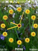 Flower Clock Theme for Nokia Asha 202