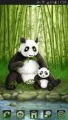 Panda GO Launcher EX QMobile NOIR A10 Theme