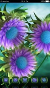 Purple Flowers CLaunche Theme for Samsung Galaxy Rush M830